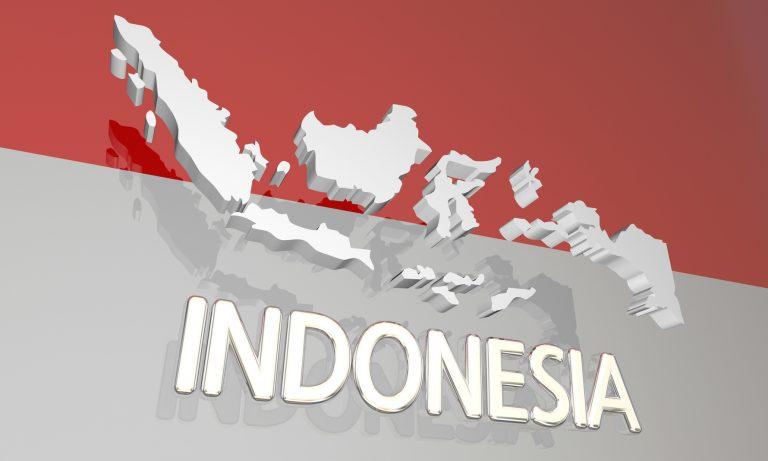 スラバヤ・インドネシア会社の不正調査